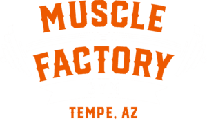 MUSCLE FACTORY GYM
